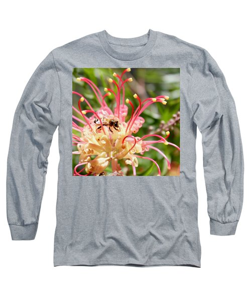 Honey Bee On Grevillea  Long Sleeve T-Shirt