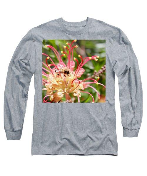 Honey Bee On Grevillea  Long Sleeve T-Shirt
