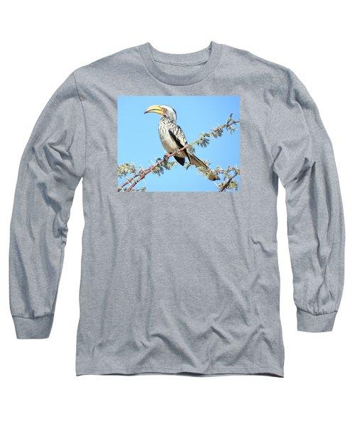 Hornbill In Thorn Tree Long Sleeve T-Shirt