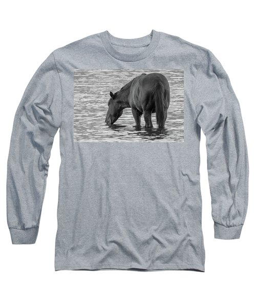 Horse 5 Long Sleeve T-Shirt