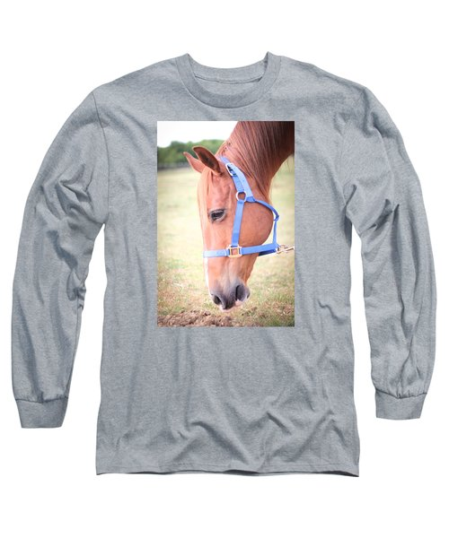 Long Sleeve T-Shirt featuring the photograph Horse Eating Grass by Kelly Hazel