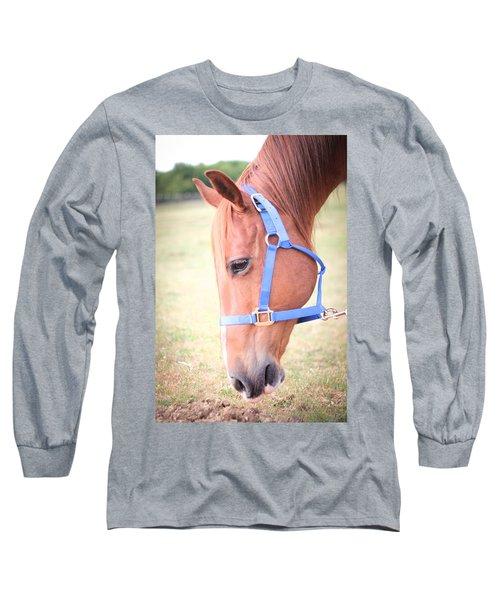 Horse Eating Grass Long Sleeve T-Shirt