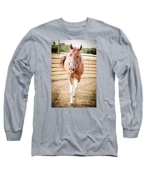 Long Sleeve T-Shirt featuring the photograph Horse Walking Toward Camera by Kelly Hazel