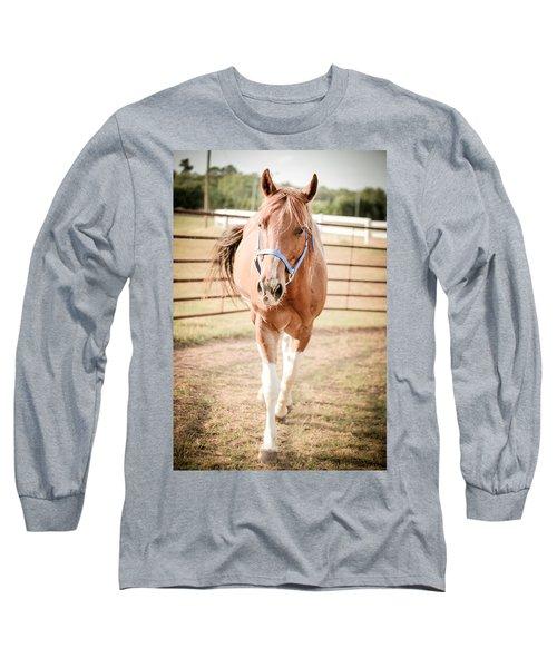 Horse Walking Toward Camera Long Sleeve T-Shirt