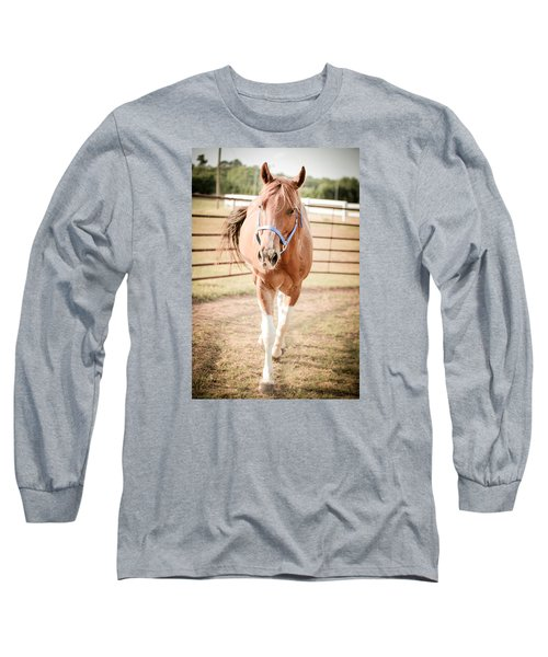 Horse Walking Toward Camera Long Sleeve T-Shirt