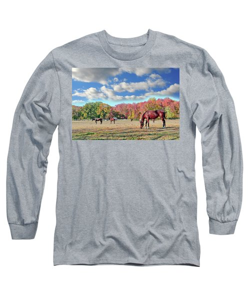 Horses Grazing At A Stable In Maryland Long Sleeve T-Shirt