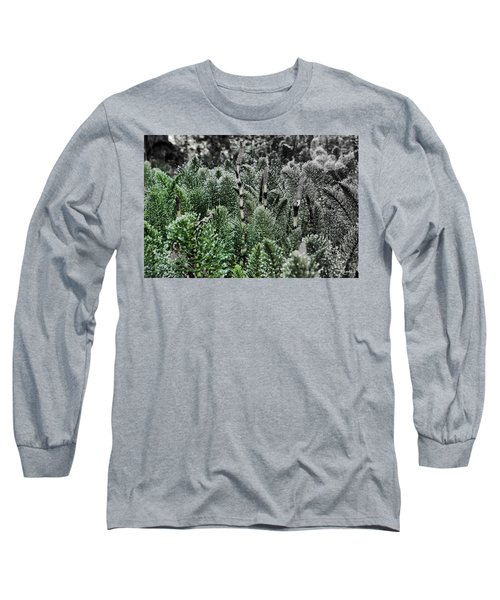 Horsetail Dewpoint Long Sleeve T-Shirt