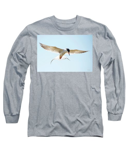 Hovering Tern Long Sleeve T-Shirt