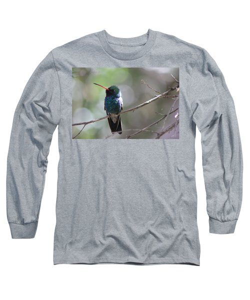 Hummer Long Sleeve T-Shirt by Kathy Bassett