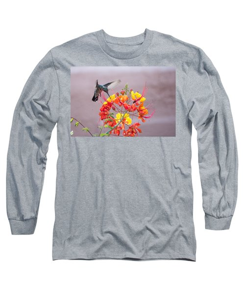 Long Sleeve T-Shirt featuring the photograph Hummingbird At Work by Dan McManus