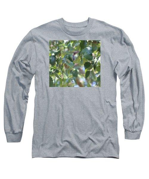Hummingbird Long Sleeve T-Shirt by Debra     Vatalaro