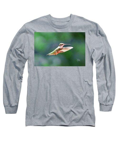 Hummingbird Flying Long Sleeve T-Shirt by Meta Gatschenberger