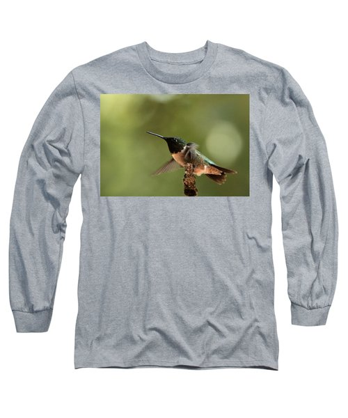 Hummingbird Take-off Long Sleeve T-Shirt