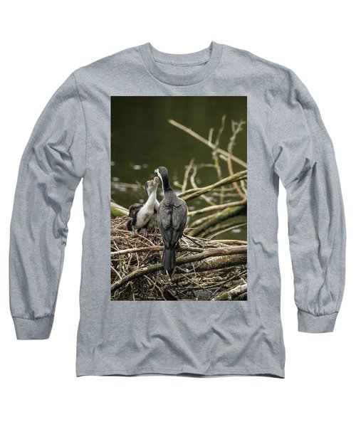 Hungry Pied Shag Chicks Long Sleeve T-Shirt by Racheal Christian