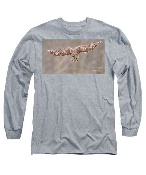 Hunting Barred Owl  Long Sleeve T-Shirt by Mircea Costina Photography