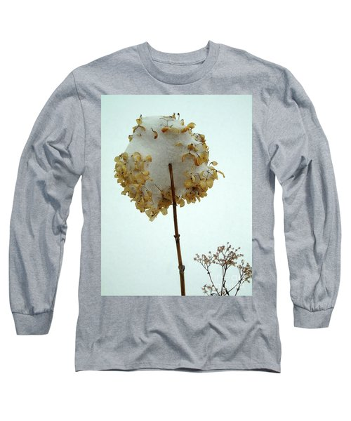 Hydrangea Blossom In Snow Long Sleeve T-Shirt