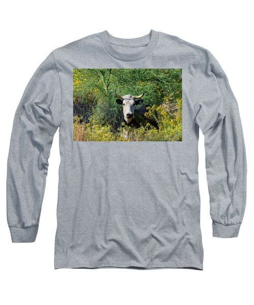 I Picked These For Moo Long Sleeve T-Shirt
