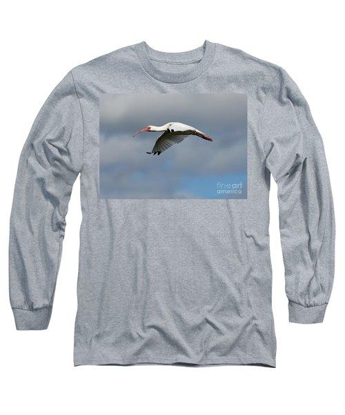 Ibis In Flight Long Sleeve T-Shirt by Carol Groenen