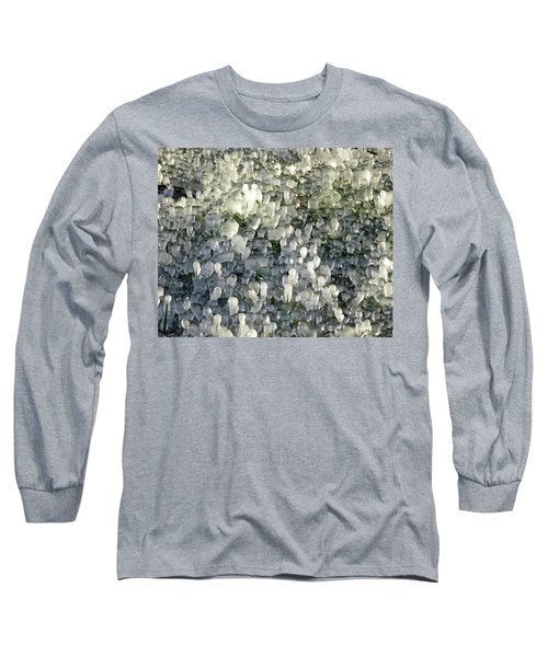 Ice On The Lawn Long Sleeve T-Shirt