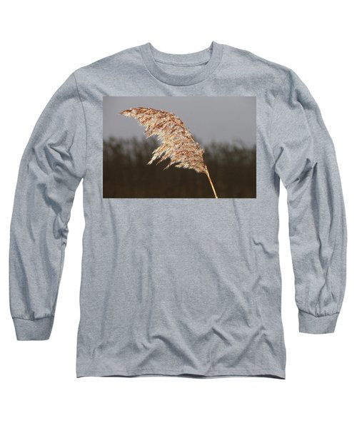 Iced Up Long Sleeve T-Shirt