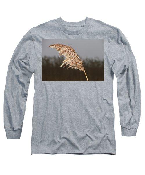 Iced Up Long Sleeve T-Shirt