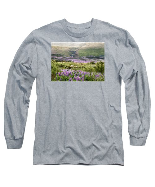 Icelandic Treasures Long Sleeve T-Shirt by William Beuther