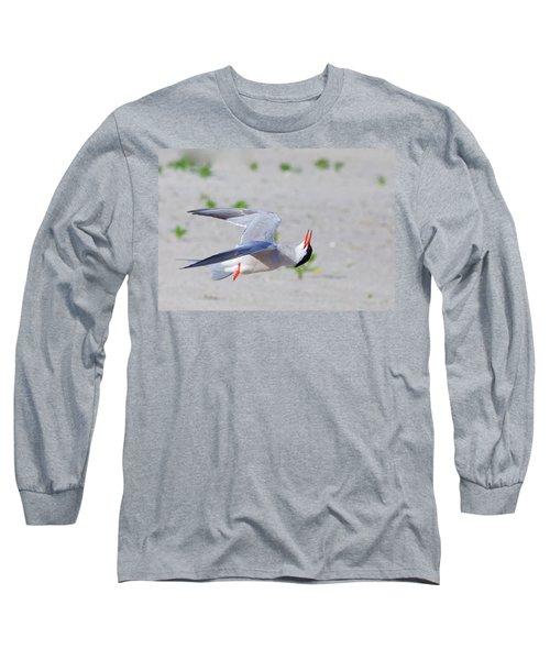 Inverted Flight Long Sleeve T-Shirt