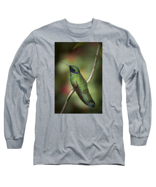 Iridescent Hummingbird With Purple  Long Sleeve T-Shirt by Penny Lisowski