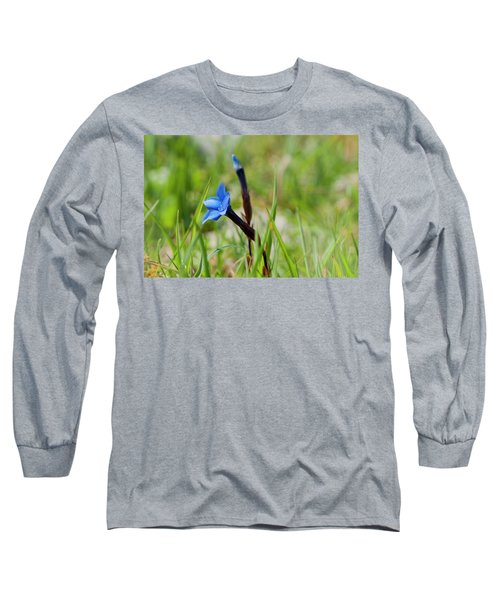 Irish Gentians Long Sleeve T-Shirt