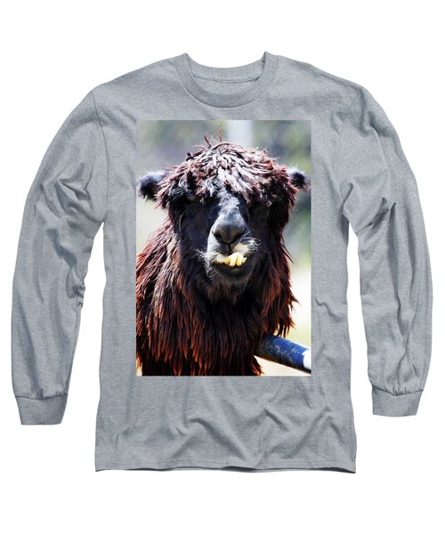 Long Sleeve T-Shirt featuring the photograph Is Your Mama A Llama? by Anthony Jones