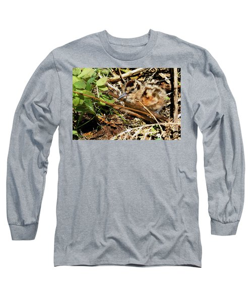 It's A Baby Woodcock Long Sleeve T-Shirt by Asbed Iskedjian