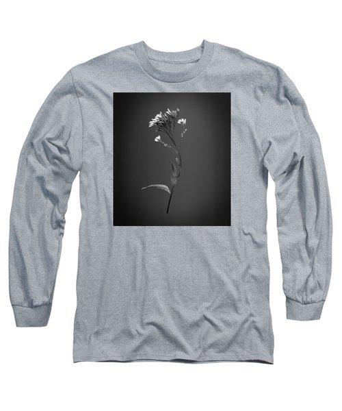 Joe Pye 1 Long Sleeve T-Shirt