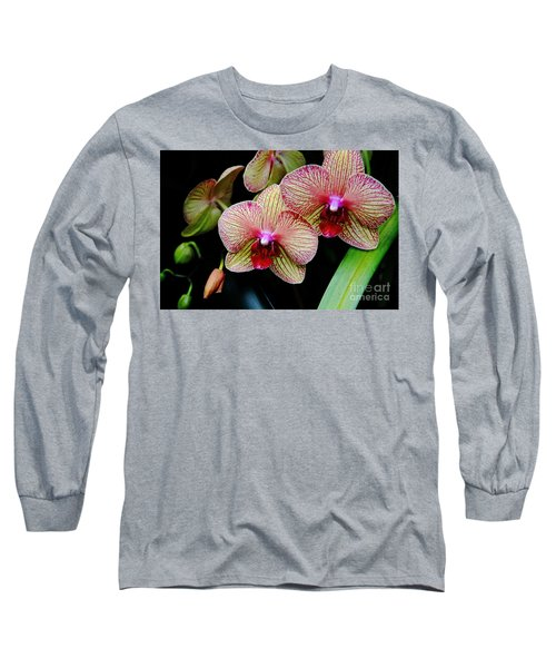Joy Within Long Sleeve T-Shirt