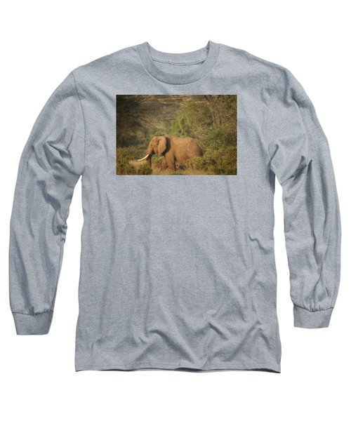 Long Sleeve T-Shirt featuring the photograph Just Passing Through by Gary Hall