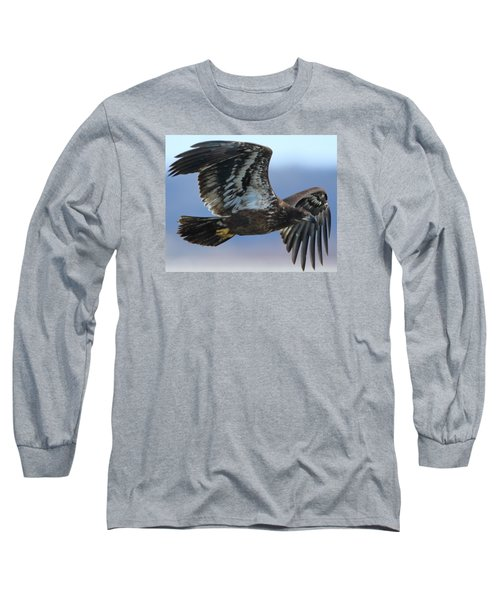 Juvenile Bald Eagle Long Sleeve T-Shirt by Coby Cooper