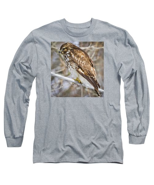 Long Sleeve T-Shirt featuring the photograph Juvenile Red-shouldered Hawk  by Ricky L Jones