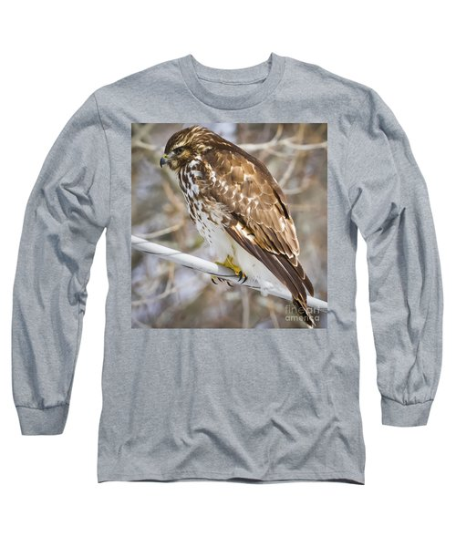 Juvenile Red-shouldered Hawk  Long Sleeve T-Shirt