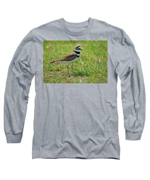Killdeer Long Sleeve T-Shirt by Rich Leighton