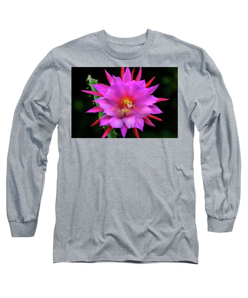 Kimnach's Pink Orchid Cactus Long Sleeve T-Shirt