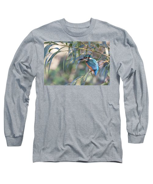 Kingfisher In Willow Long Sleeve T-Shirt