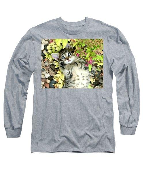 Kitten Dreams Long Sleeve T-Shirt