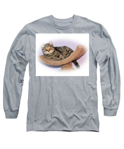 Long Sleeve T-Shirt featuring the photograph Kitty Perch by Debbie Stahre