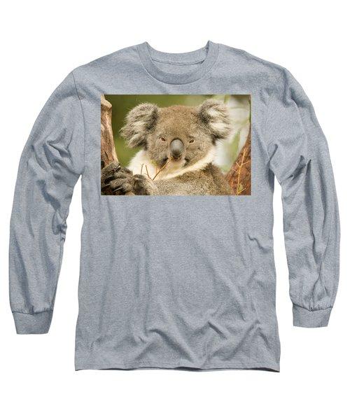 Koala Snack Long Sleeve T-Shirt by Mike  Dawson