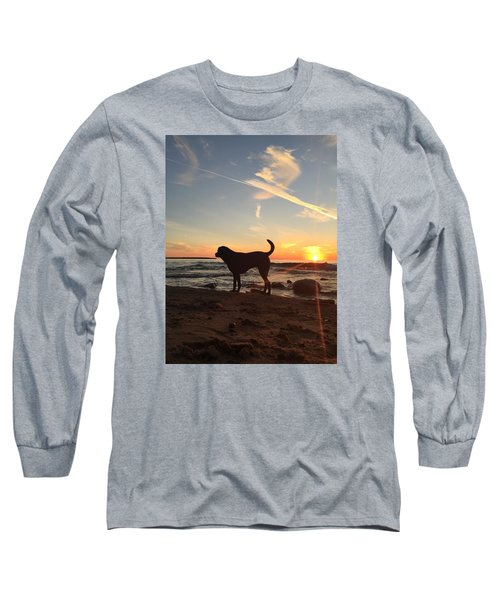 Long Sleeve T-Shirt featuring the photograph Labrador Dreams by Paula Brown