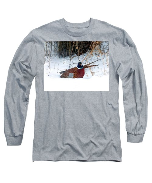 Long Sleeve T-Shirt featuring the photograph Lake Country Pheasant 2 by Will Borden