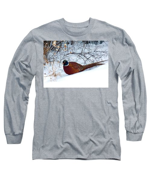 Long Sleeve T-Shirt featuring the photograph Lake Country Pheasant by Will Borden
