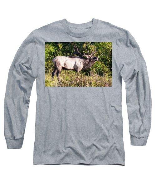 Large Bull Elk Bugling Long Sleeve T-Shirt