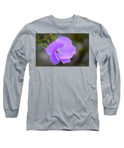 Long Sleeve T-Shirt featuring the photograph Lavender Flower by AJ Schibig