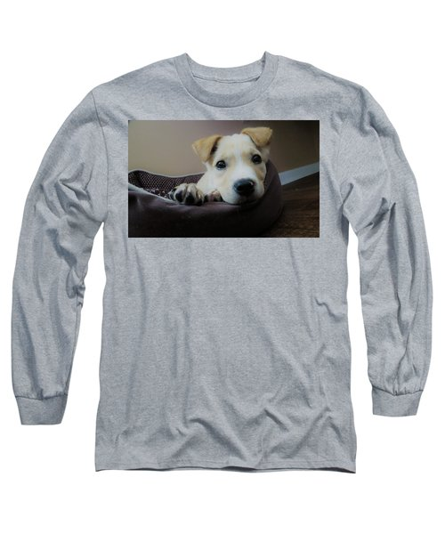 Lazy Day Long Sleeve T-Shirt by Aaron Martens