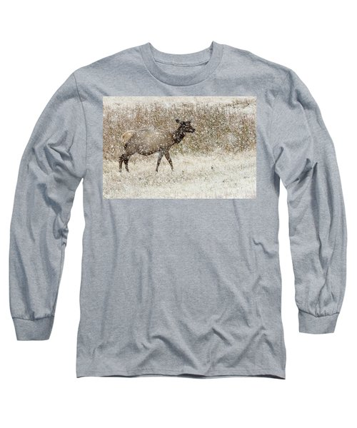 Lead Cow Long Sleeve T-Shirt